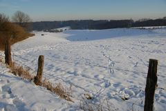 Winterbild ...