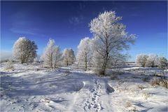 ~ Winterblau ~