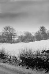Winterblick durchs ehemalige Niemandsland