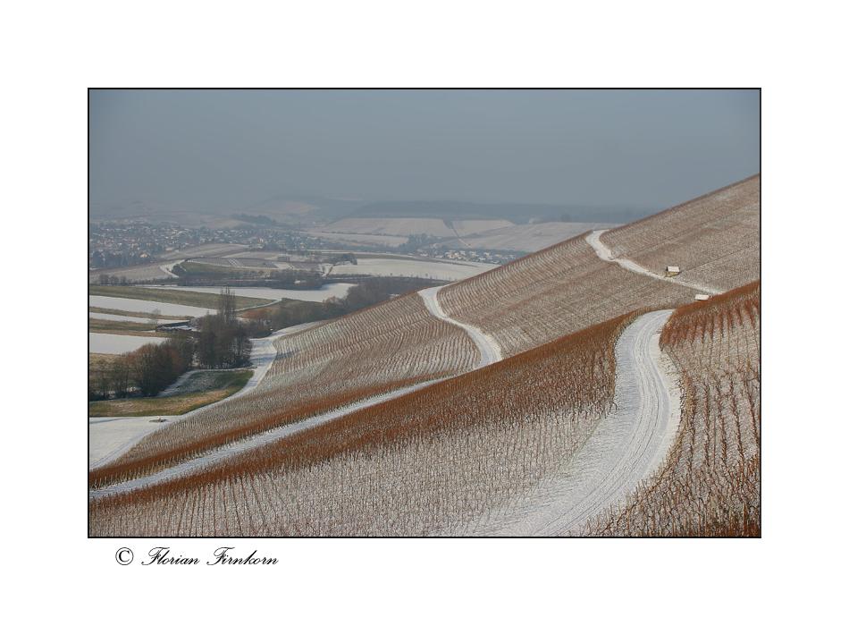 Winterblicke