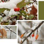 Wintercollage
