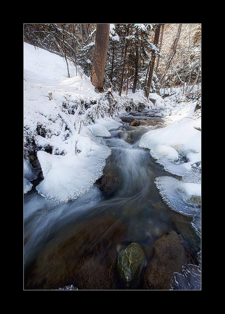 wintercolors 2
