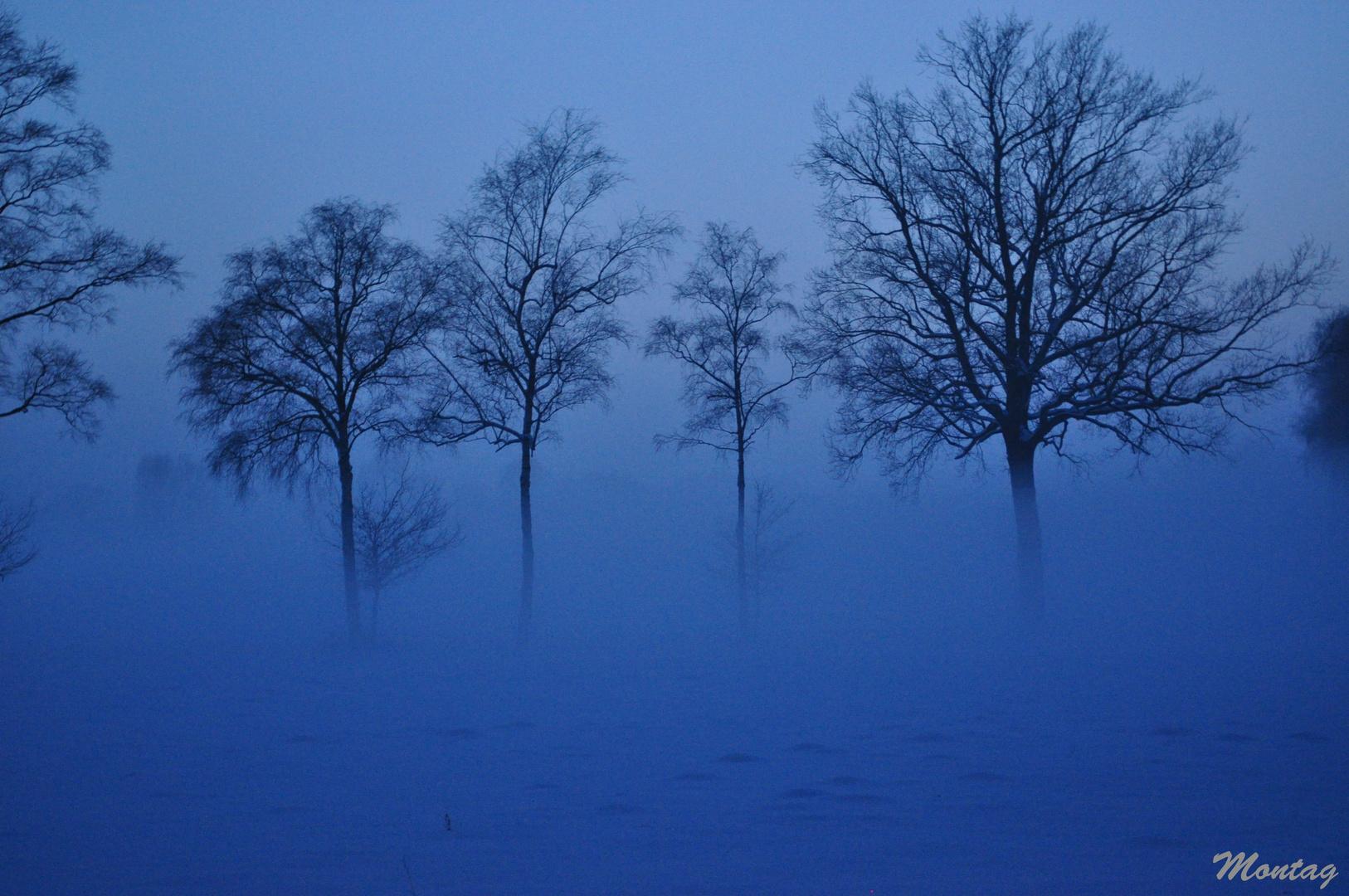 Winterdämmerung