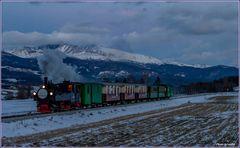 Winterdampf im Lungau VI