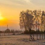 Winterdream
