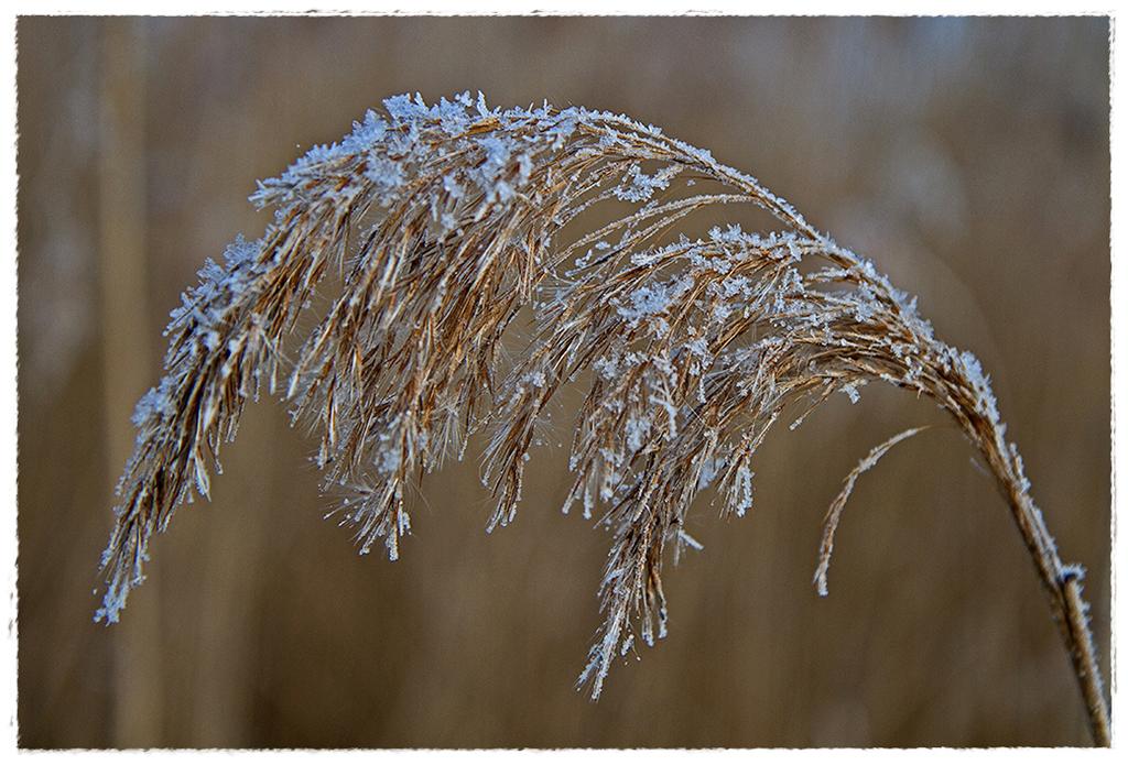 Wintereinbruch 2
