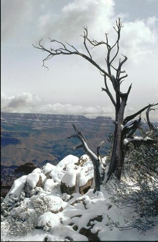 Wintereinbruch am Grand Canyon