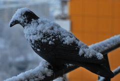 Wintereinbruch für zwei Stunden 2