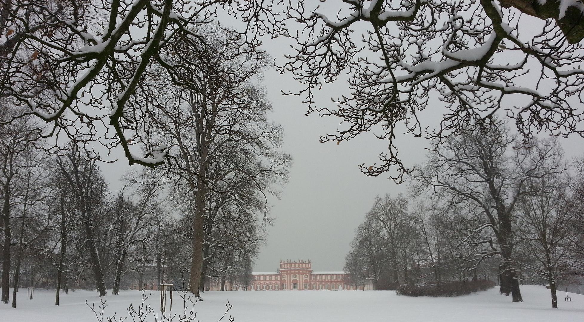 Wintereinbruch im Biebricher Schlosspark 2