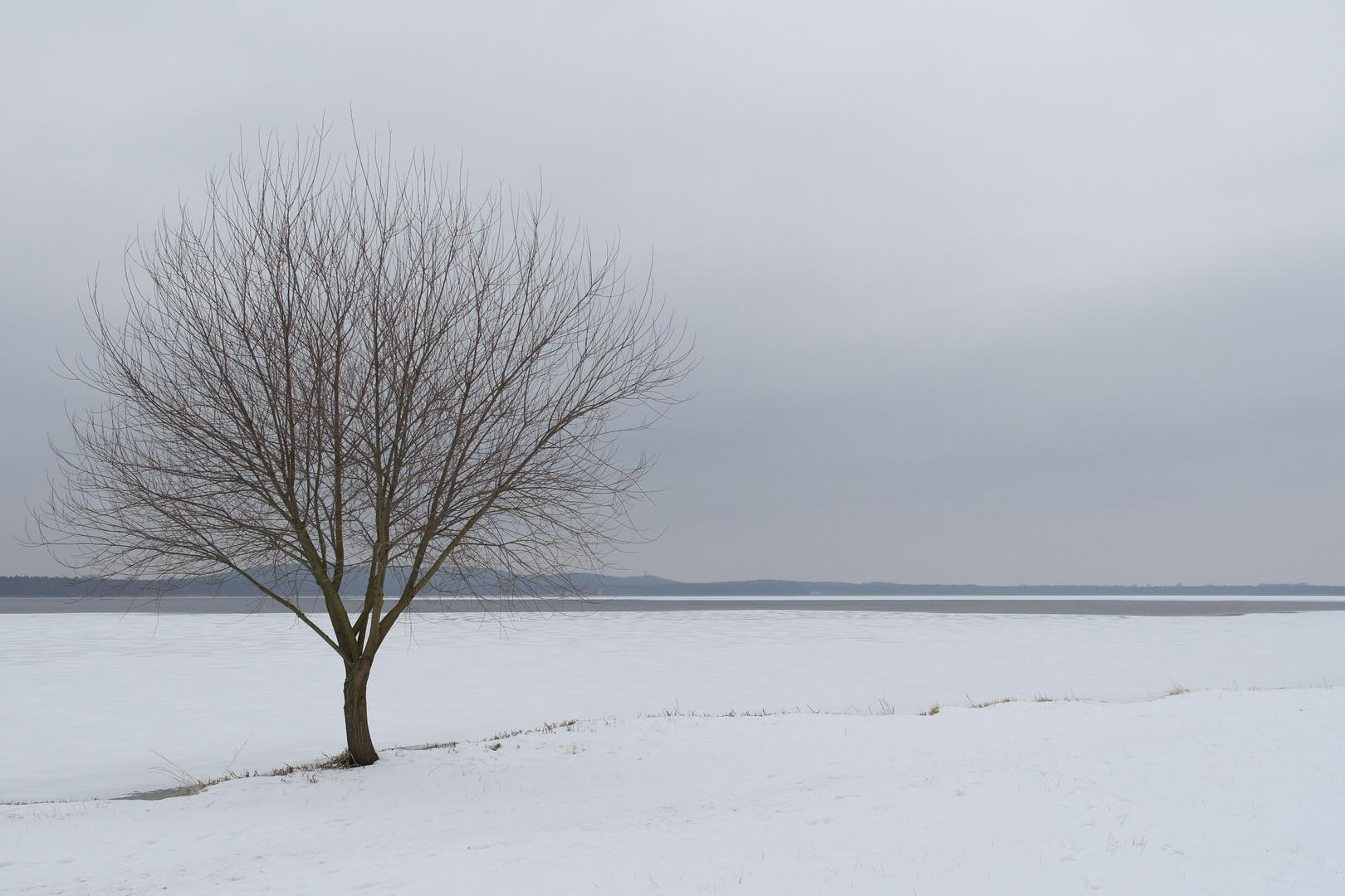 Wintereinbruch im März