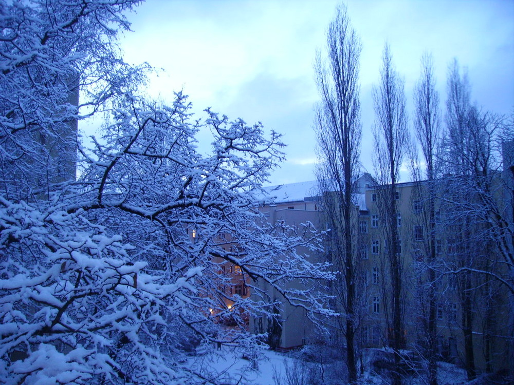 Wintereinbruch in Berlin 2009