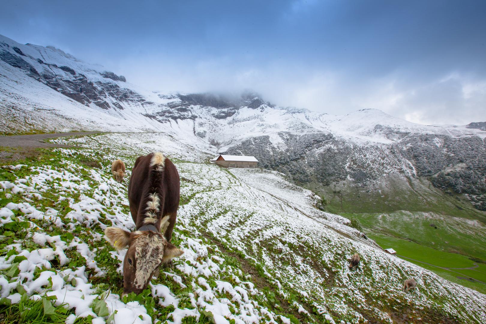 Wintereinbruch in den Alpen