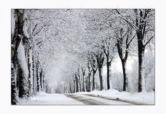 Wintereinbruch in umzu...