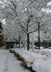 Wintereinbruch in Zürich