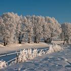 Wintereindrücke zweier Langlauftouren