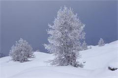 Wintereinsamkeit