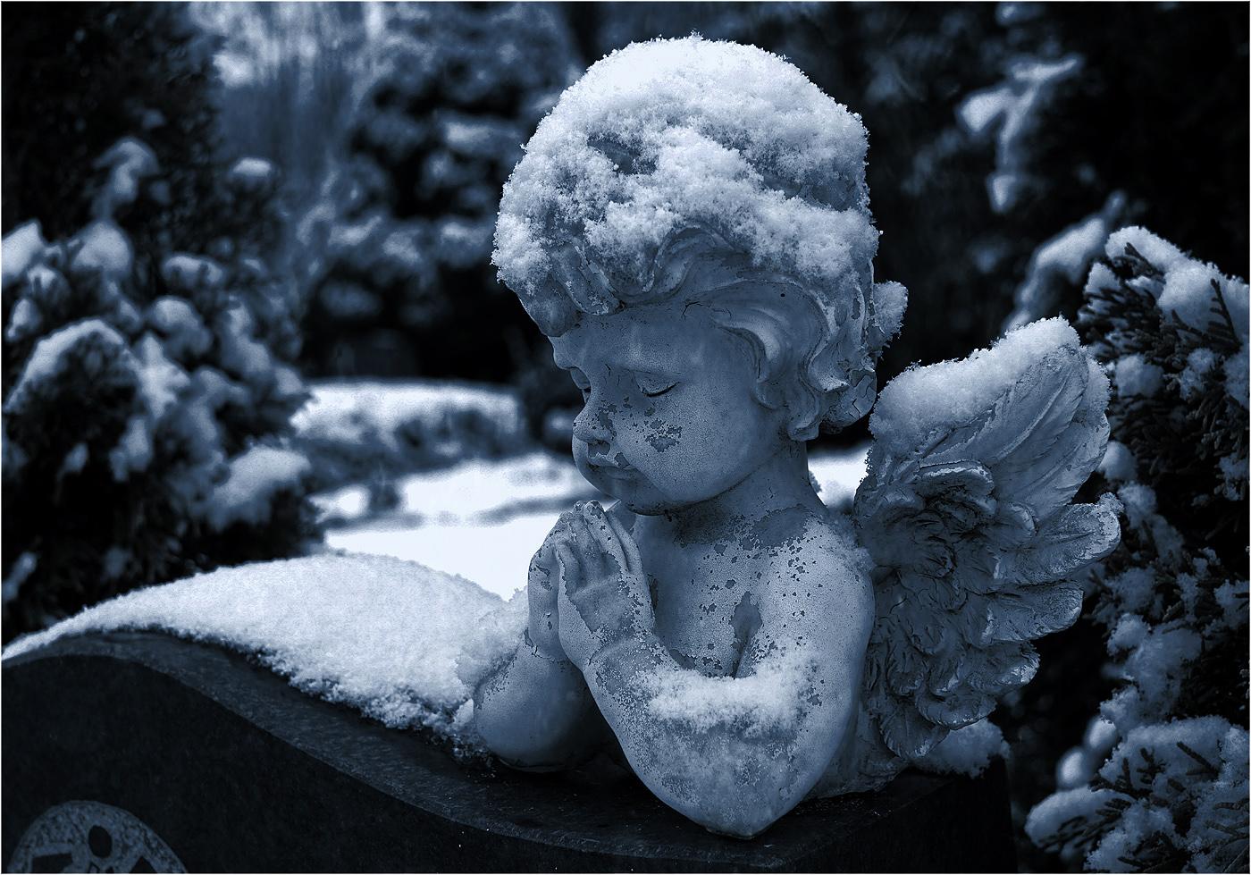 Winterengel
