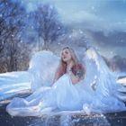 ~ Winterengel ~