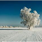 Winterfototour