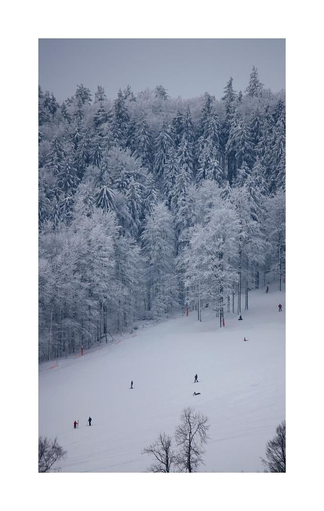 ...Winterfreude..