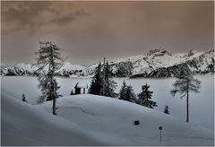 Winterfreuden #4