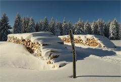 Winterfreuden im Erzi