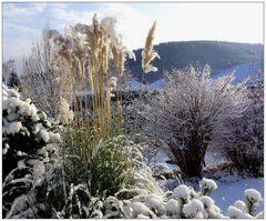 winter.garten...