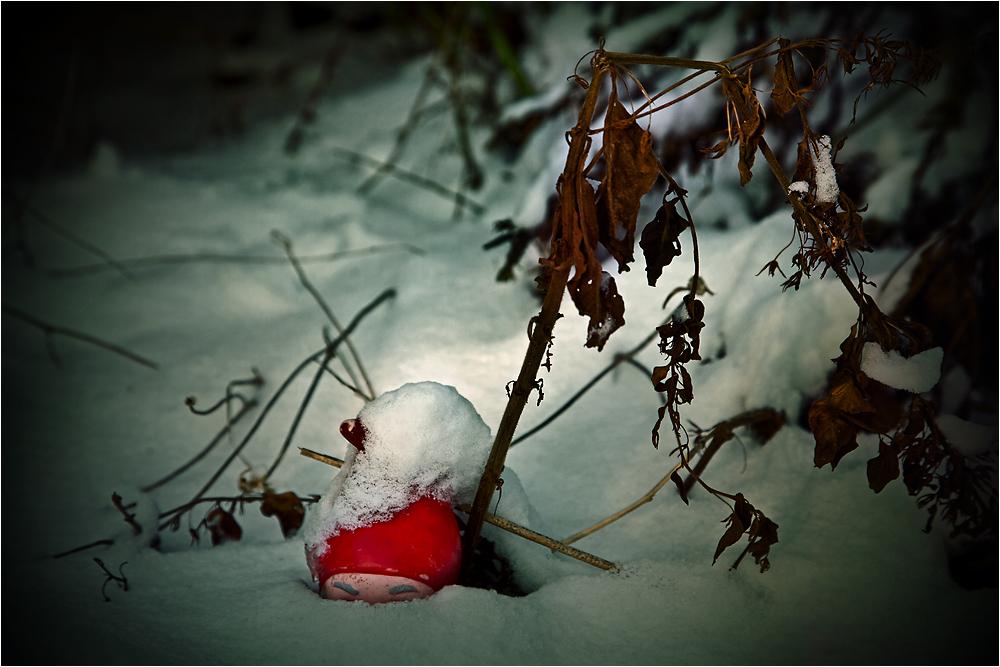 Wintergartenwächter Zwergi ...