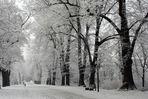 Wintergefühle...