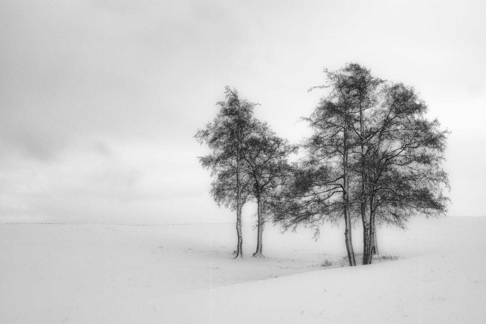 Wintergemälde