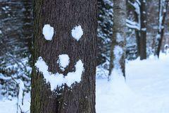 Wintergesicht :-)