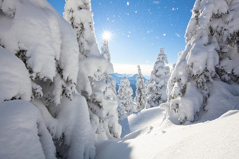 winterglück am breitenberg
