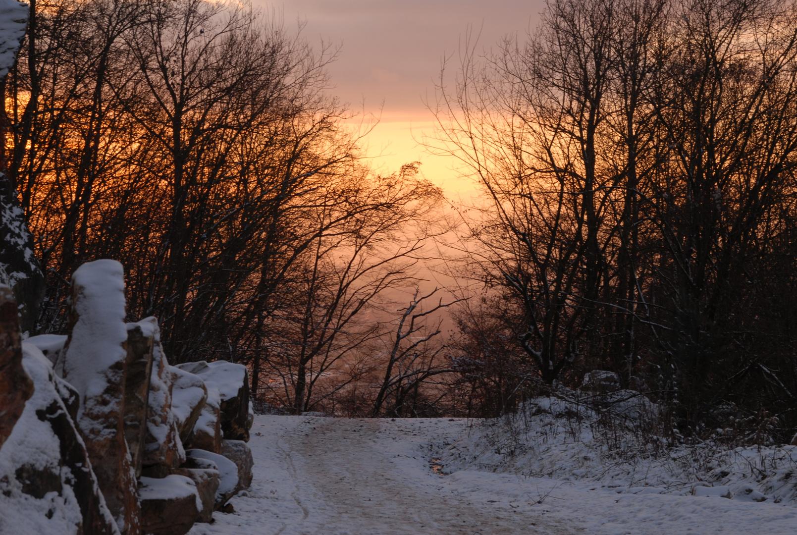 Winterglühn'