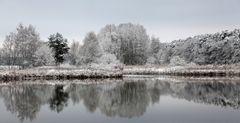 ~ Wintergruss ~