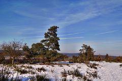Winterheide 2