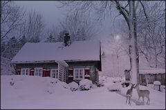 WinterIdyll...