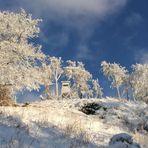 winteridyll am inselsberg
