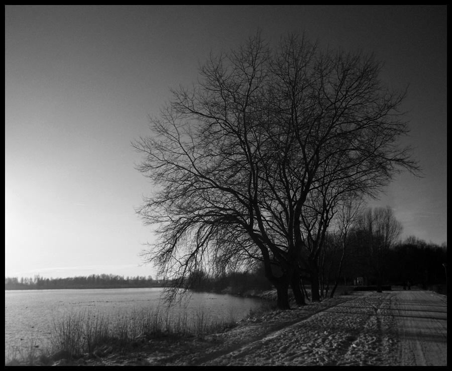 Winterime v1