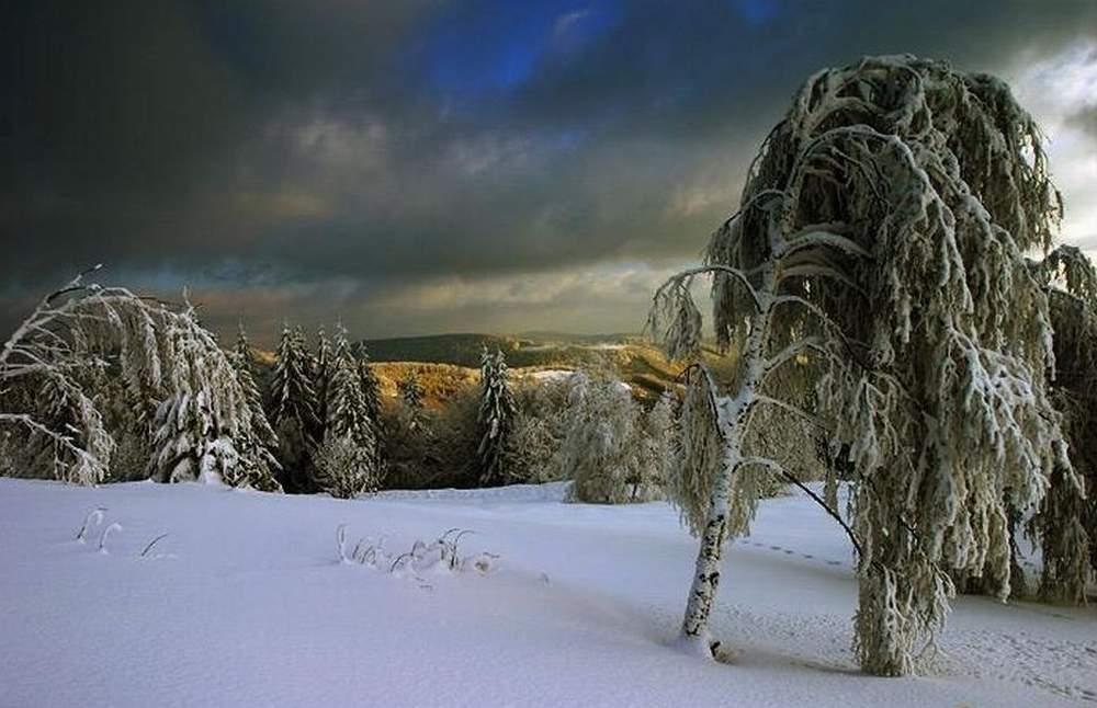 Winterimpresionen