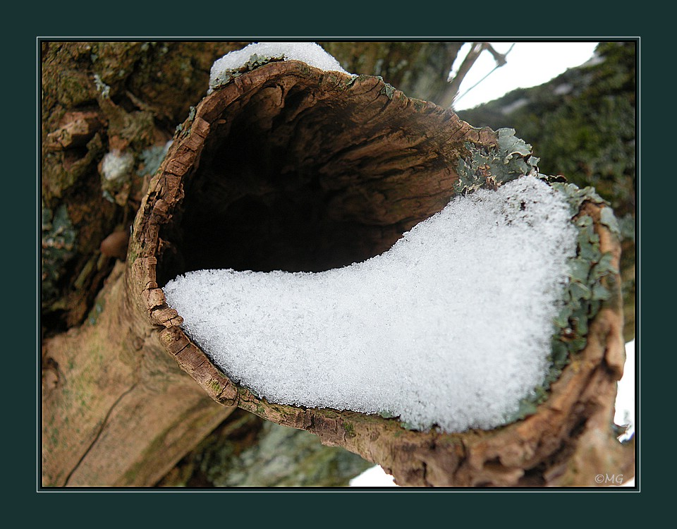 Winterimpression...