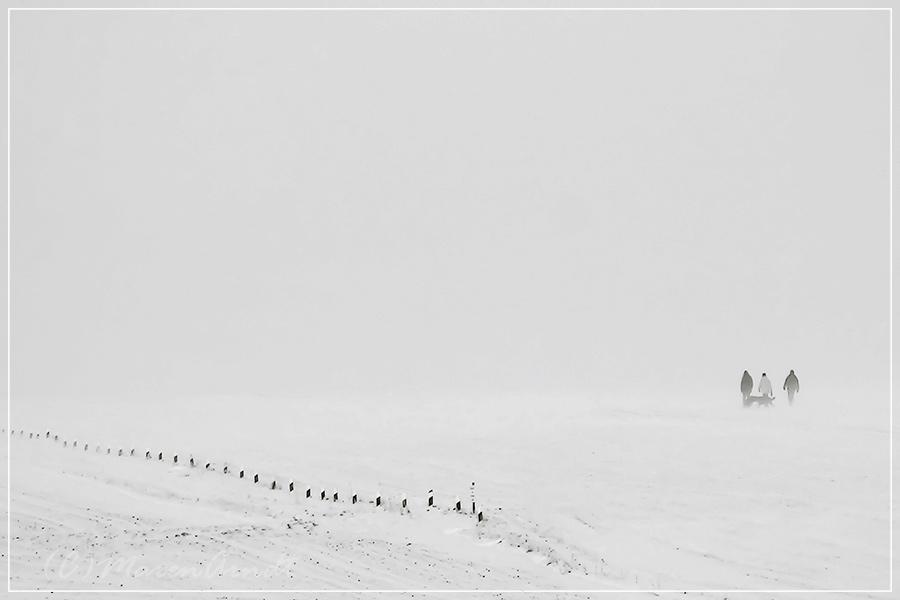 Winterimpression (1)