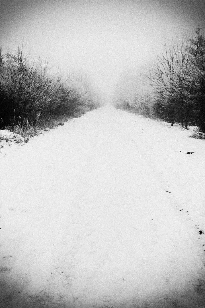 Winterimpression 4