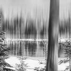 ... Winterimpression ...