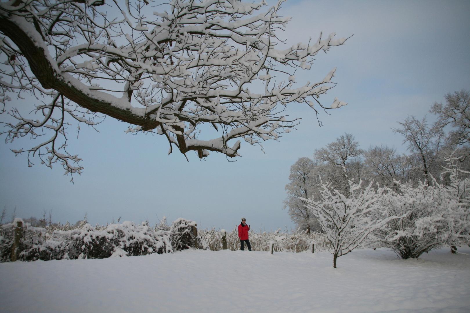 Winterimpression aus dem ...