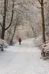 Winterimpression Nr. 4