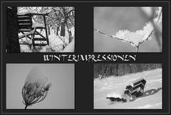 ** Winterimpressionen **