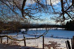 Winterimpressionen aus Tutzing