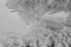 Winterimpressionen I