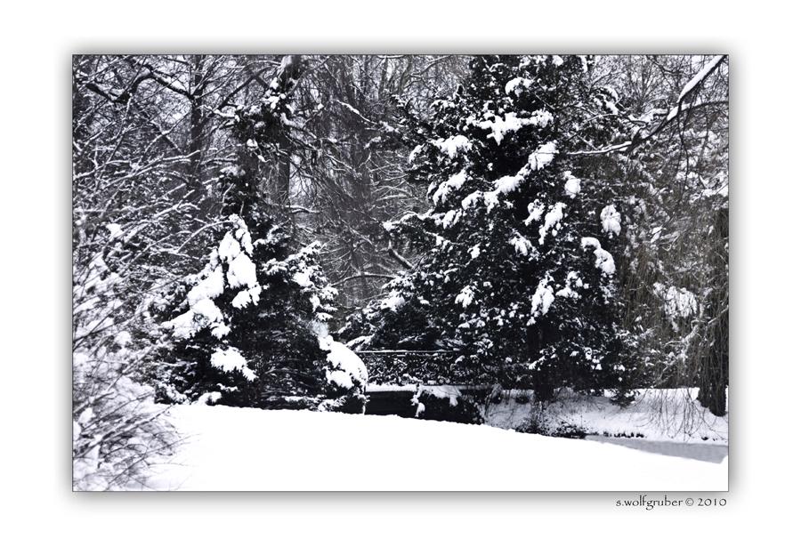 ,Winterimpressionen - Schlosspark Sanssouci