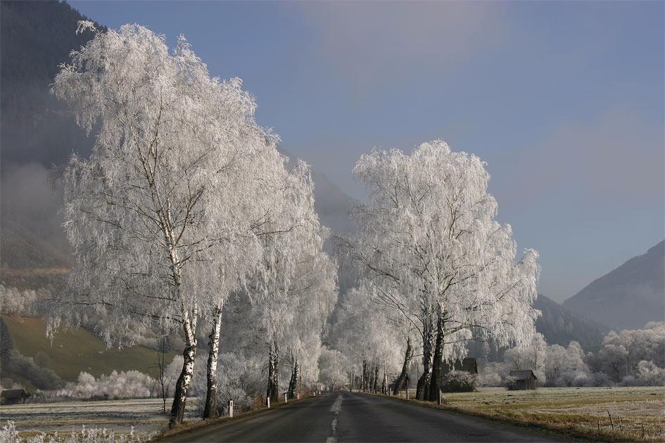 *Winterkleid*